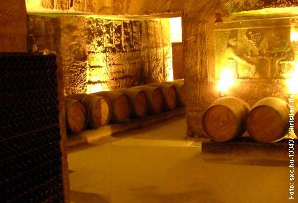 Deutscher Rotwein - Der Dornfelder, mehr als ein einfacher Rotwein