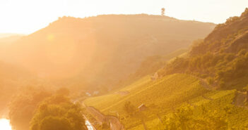 Entdecken Sie die Weine der Umgebung bei einer Weinreise an der Nahe.