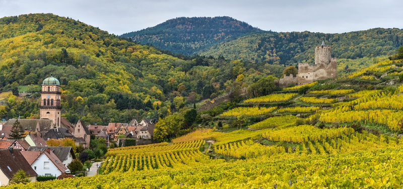 Beginnen wir ganz klassisch an der deutsch-französischen Grenze: im Elsass. Diese Region ist seit Generationen bekannt für ihre besonders schmackhafte regionale Küche, von deren Qualität man sich überall überzeugen kann. Natürlich darf auch ein Glas Crémant d'Alsace nicht fehlen, der sich vor allem durch seine fruchtige Note auszeichnet. (#01)