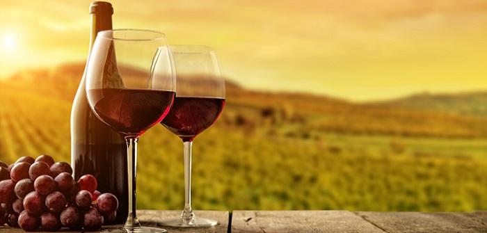 Rotwein selber machen: Anleitung für Hobby-Winzer