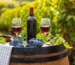 Von fruchtig bis würzig: Rotweine aus aller Welt überzeugen mit ihren Aromen ( Foto: Shutterstock-FreeProd33 )